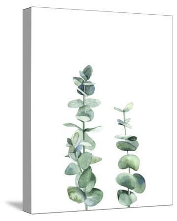 Eucalyptus I-Ann Solo-Stretched Canvas Print