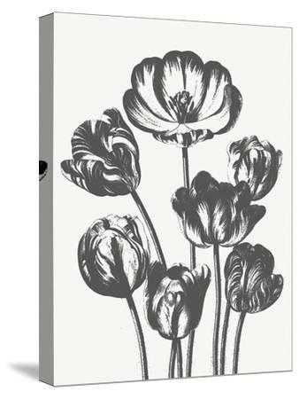 Tulips (Ivory & Ink)-Botanical Series-Stretched Canvas Print