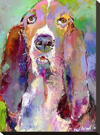 Basset Hound-Richard Wallich-Stretched Canvas Print