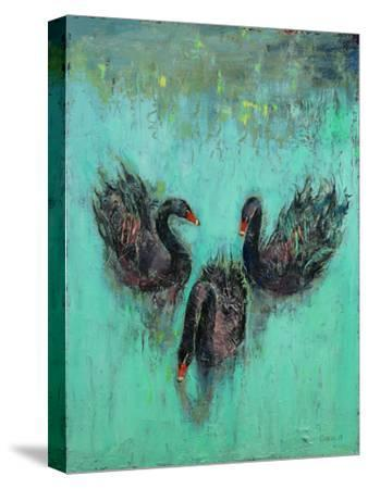 Black Swans-Michael Creese-Stretched Canvas Print