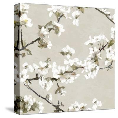 Confetti Bloom II-Tania Bello-Stretched Canvas Print