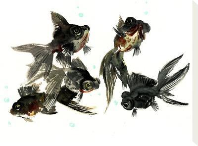 Black Moor Feng Shui-Suren Nersisyan-Stretched Canvas Print