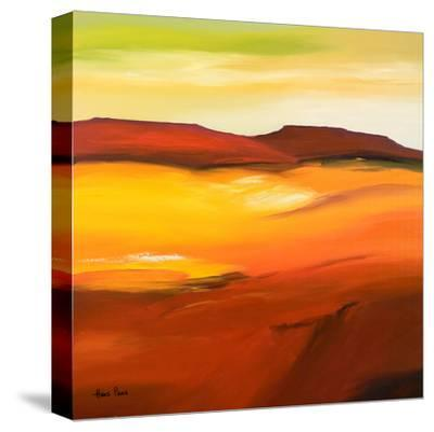 Desolation 1-Hans Paus-Stretched Canvas Print