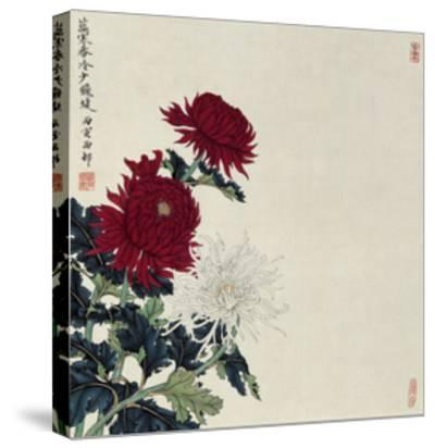 Winter Flowers-Hsi-Tsun Chang-Stretched Canvas Print