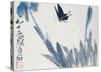 Dancing Butterfly-Baishi Qi-Stretched Canvas Print