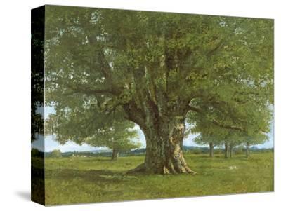 The Oak of Flagey, Called Vercingetorix-Gustave Courbet-Stretched Canvas Print
