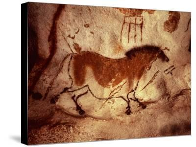 Rock Painting of a Horse, circa 17000 BC--Stretched Canvas Print
