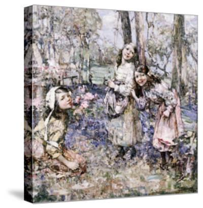 Gathering Bluebells, 1909-Edward Atkinson Hornel-Stretched Canvas Print
