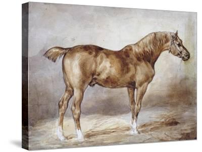 Horse in a Stable-Th?odore G?ricault-Stretched Canvas Print