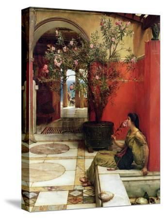 An Oleander, 1882-Sir Lawrence Alma-Tadema-Stretched Canvas Print