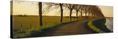 Winding Road, Trees, Oudendijk, Netherlands--Stretched Canvas Print