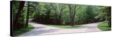 Fork in a Road Surrounded by Trees, Park Road, Letchworth State Park, New York State, USA--Stretched Canvas Print