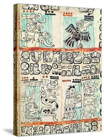 Detail from a Mayan Codex--Stretched Canvas Print