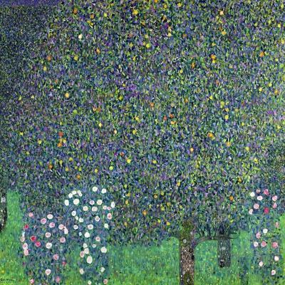 Roses Under the Trees, circa 1905-Gustav Klimt-Stretched Canvas Print