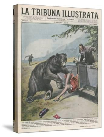 In Yellowstone a Bear Pats a Woman in a Car-Vittorio Pisani-Stretched Canvas Print