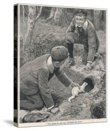 Two Boys in Caps Set a Ferret Down a Rabbit Hole--Stretched Canvas Print