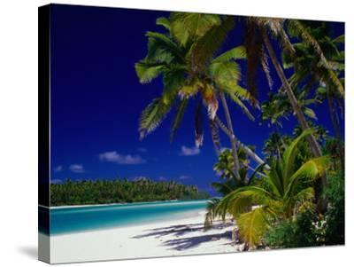 Beach with Palm Trees on Island in Aitutaki Lagoon,Aitutaki,Southern Group, Cook Islands-Dallas Stribley-Stretched Canvas Print