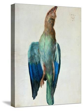 Roller (Bird), 1512-Albrecht D?rer-Stretched Canvas Print