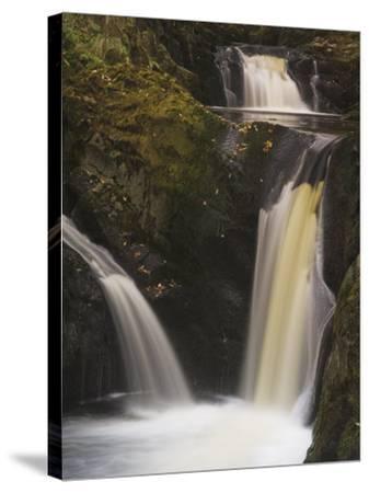 Pecca Falls, Ingleton Waterfalls Walk, Yorkshire Dales National Park, Yorkshire-Neale Clarke-Stretched Canvas Print