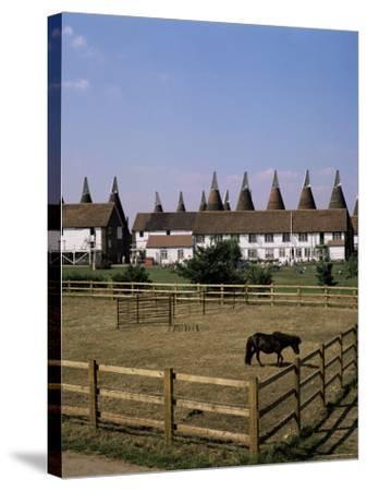 Oast Houses at Whitbread Hop Farm, Tonbridge, Kent, England, United Kingdom-G Richardson-Stretched Canvas Print