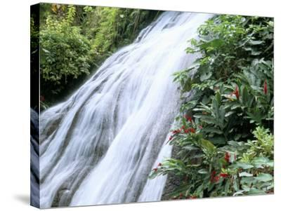 Shaw Waterfalls, Ocho Rios, Jamaica, West Indies, Central America-Sergio Pitamitz-Stretched Canvas Print