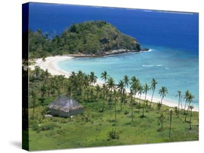 Coconut Plantation and Old Farmhouse Beside Coral Sand Bay, Mana Island, Mamanuca Group, Fiji-Tony Waltham-Stretched Canvas Print