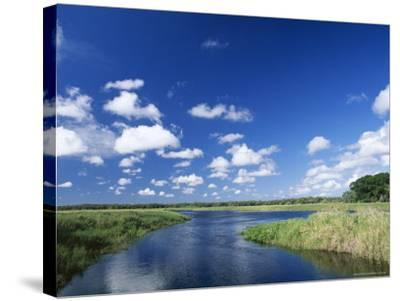 View from Riverbank of White Clouds and Blue Sky, Myakka River State Park, Near Sarasota, USA-Ruth Tomlinson-Stretched Canvas Print