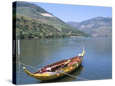 Vineyards Near Pinhao, Douro Region, Portugal-R H Productions-Stretched Canvas Print