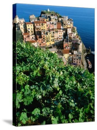Manarola Town from Above, Cinque Terre, Liguria, Italy-John Elk III-Stretched Canvas Print