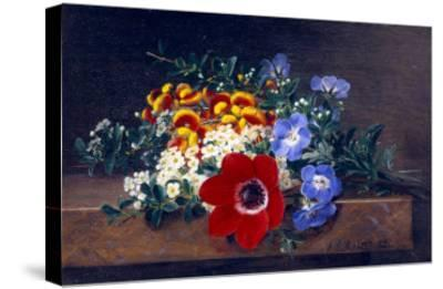 Anemone, White Spirea, Calceolaria and Blue Geranium-Johan Laurentz Jensen-Stretched Canvas Print