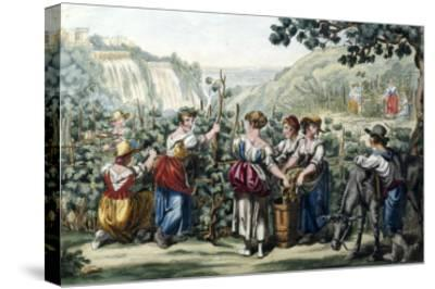 The Grape Harvest-Bartolomeo Pinelli-Stretched Canvas Print