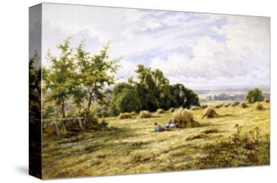 Hampshire Cornfield-Henry Parker-Stretched Canvas Print