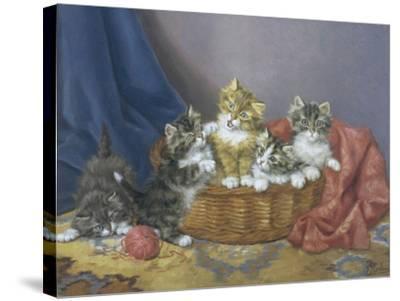 Basket of Mischief-Daniel Merlin-Stretched Canvas Print