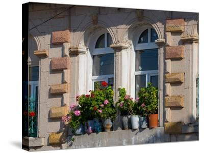 Windows and Flowers in Village, Cappadoccia, Turkey-Darrell Gulin-Stretched Canvas Print