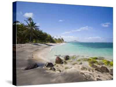 Nisbett Plantation Beach, Nevis, Caribbean-Greg Johnston-Stretched Canvas Print