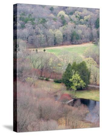 Spring Forest in East Haddam, Connecticut, USA-Jerry & Marcy Monkman-Stretched Canvas Print