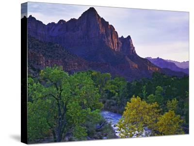 The Watchman Peak and the Virgin River, Zion National Park, Utah, USA-Dennis Flaherty-Stretched Canvas Print