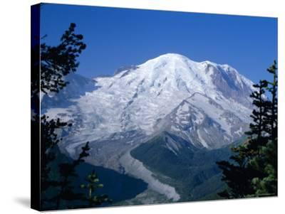 Mount Rainier, Volcanic Peak, and Emmons Glacier from Summit Icefield, Washington State, USA-Anthony Waltham-Stretched Canvas Print