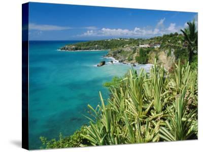 Guadeloupe, French Antilles, West Indies, Caribbean-J P De Manne-Stretched Canvas Print