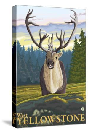 Caribou in the Wild, West Yellowstone, Montana-Lantern Press-Stretched Canvas Print