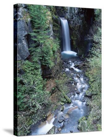Christine Falls, Mount Rainier National Park, Washington State-Colin Brynn-Stretched Canvas Print