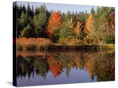 Maine Pond with Reflection and Chair, USA-Charles Sleicher-Stretched Canvas Print