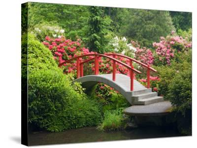 Moon Bridge and Blossoming Rhododendrons, Kubota Garden, Seattle, Washington, USA-Jamie & Judy Wild-Stretched Canvas Print