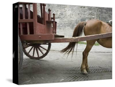 Horse Pulling a Cart in Jingzhou, China-David Evans-Stretched Canvas Print