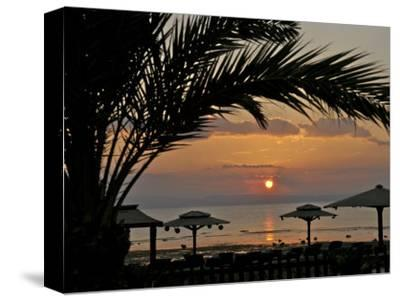 Dahab, Egypt, Middle East:Silhouette of Palm Tree over the Sunset-Brimberg & Coulson-Stretched Canvas Print