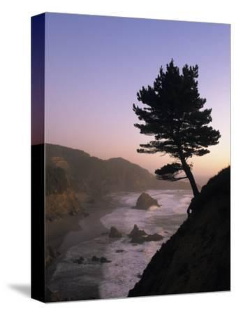 Scenic View of the Oregon Coast at Twilight-Phil Schermeister-Stretched Canvas Print