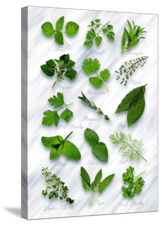 Various Herbs on Marble-Peter Howard Smith-Stretched Canvas Print