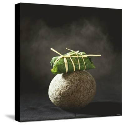 Fish Wrapped in a Leaf on a Stone-Pepe Nilsson-Stretched Canvas Print