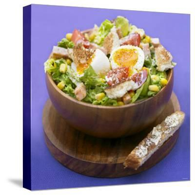Mixed Salad with Chicken Breast and Egg-Bernard Radvaner-Stretched Canvas Print