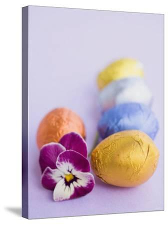 Chocolate Eggs in Foil, with Pansy--Stretched Canvas Print
